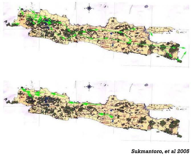 Peta Jalur migrasi di Jawa/ by Sukmantoro et al